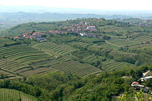 vins rouges italiens