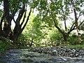 ΛΑΧΑΝΑΣ-ΣΤΕΦΑΝΙΑ(Πηγές Γαλικού Ποταμού) - panoramio.jpg