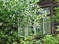 Белая черемуха под моим окном - panoramio.jpg