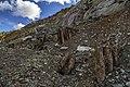 Медно-Рудянский карьер.Вскрывшиеся крепи старых шахт. - panoramio (2).jpg