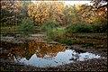 Осень в Ботаническом саду - panoramio (6).jpg