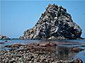 Остров чаек - panoramio.jpg
