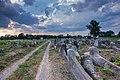 Пантеон на могилі цадика, Бердичів.jpg