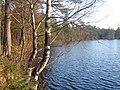 Последние теплые дни. Озеро Верхолино. - panoramio.jpg