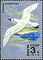 Почтовая марка СССР № 4847. 1978.Животный мир Антарктики.jpg