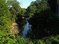 Річка Либіть виходить з-під землі - panoramio.jpg
