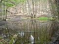 Самево Езеро (Езерче) 06.jpg