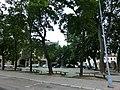 Сквер Гуцявичуса - panoramio.jpg