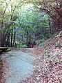 Смоларски водопад 32.jpg