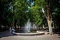 Центральний фонтан в сквері.jpg