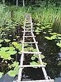 Шацький національний природний парк, Світязь 6.jpg
