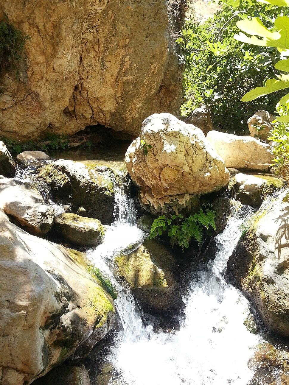 מים בנחל פרת