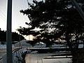 池 - panoramio.jpg