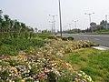 环湖路 - panoramio.jpg