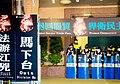 臺灣太陽花民主運動之呼籲 馬匪下台 法辦江兇 TAIWANESE Call the Bloody Ma Ying-jeou regime to Step Down and Bring Jiang Yi-huah to Justice during the Sunflower Movement of TAIWAN.jpg