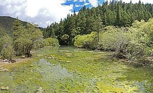 Huanglong, Sichuan - Image: 黃龍 瀲灩湖