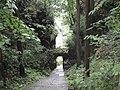 黄石寨风光 - panoramio (9).jpg