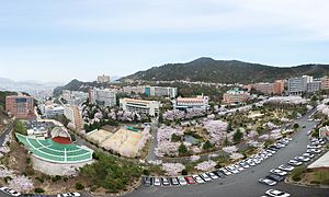 Busanjin District - Dong-eui University