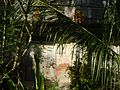 01155jfPoblacion Old Houses San Vicente San Miguel Bulacan Bulacanfvf 10.jpg