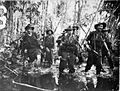 013971 2-7 Cav in swamp Buna.JPG