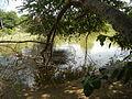 07834jfPampanga River banks Candelaria Welcome Calumpit Bulacan Roadsfvf 02.JPG