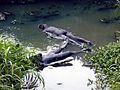 0883 sculptures de Malam dans l'eau.jpg