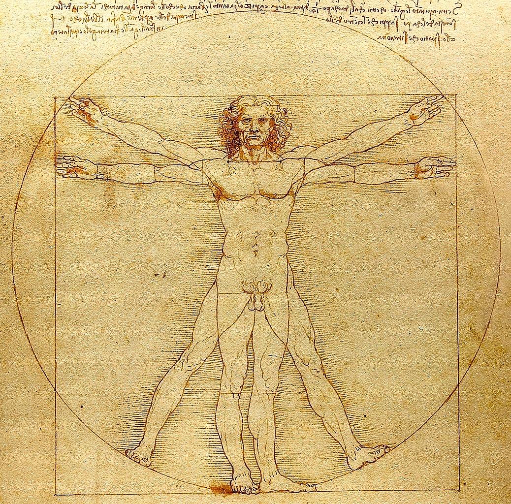 Почему этот рисунок стал знаменитым? Леонардо да Винчи и секрет «Витрувианского