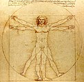 0 The Vitruvian Man - by Leonardo da Vinci.jpg