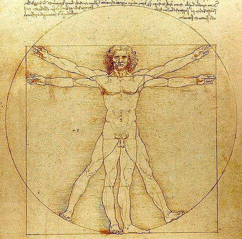 File:0 The Vitruvian Man - by Leonardo da Vinci.jpg - Wikimedia Commons