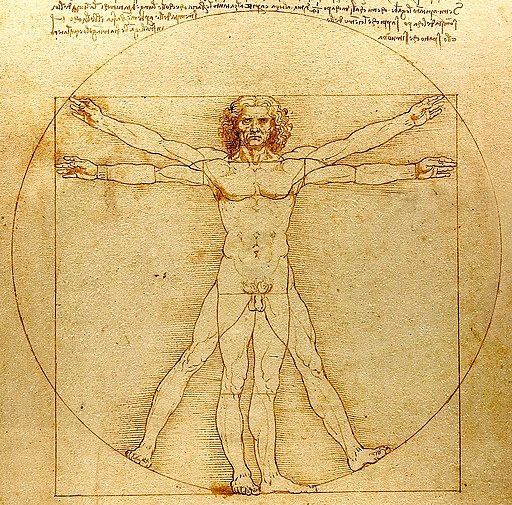 0 The Vitruvian Man - by Leonardo da Vinci