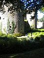 12 08-08 Château de Ranrouët 020.jpg