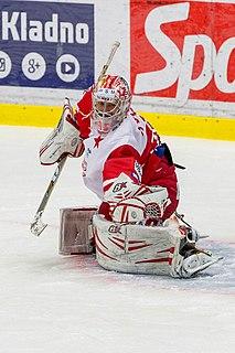 Alexandr Hylák Czech ice hockey player