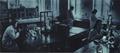 1952-05 华北农业科学研究所.png