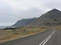 2005-05-29 11 05 25 Iceland-Starmýri.JPG