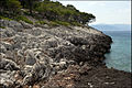 20090517 Dragonera Angistri island Greece 2.jpg