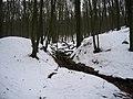 2010-02 Wittekindsweg Nonnenstein-Heidbrink 084.jpg