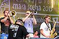 2013 Woodstock 129 Cała Góra Barwinków.jpg