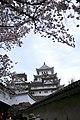 20160403 Himeji-Castle 3298 (26220535934).jpg