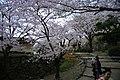 20160403 Himeji-Castle 3315 (26826041455).jpg