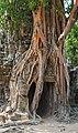 2016 Angkor, Ta Som (28).jpg