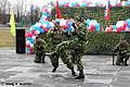 27th Independent Sevastopol Guards Motor Rifle Brigade (182-25).jpg