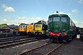 33108,D9009, 55019 &18000 - Didcot Railway Centre (8864262192).jpg