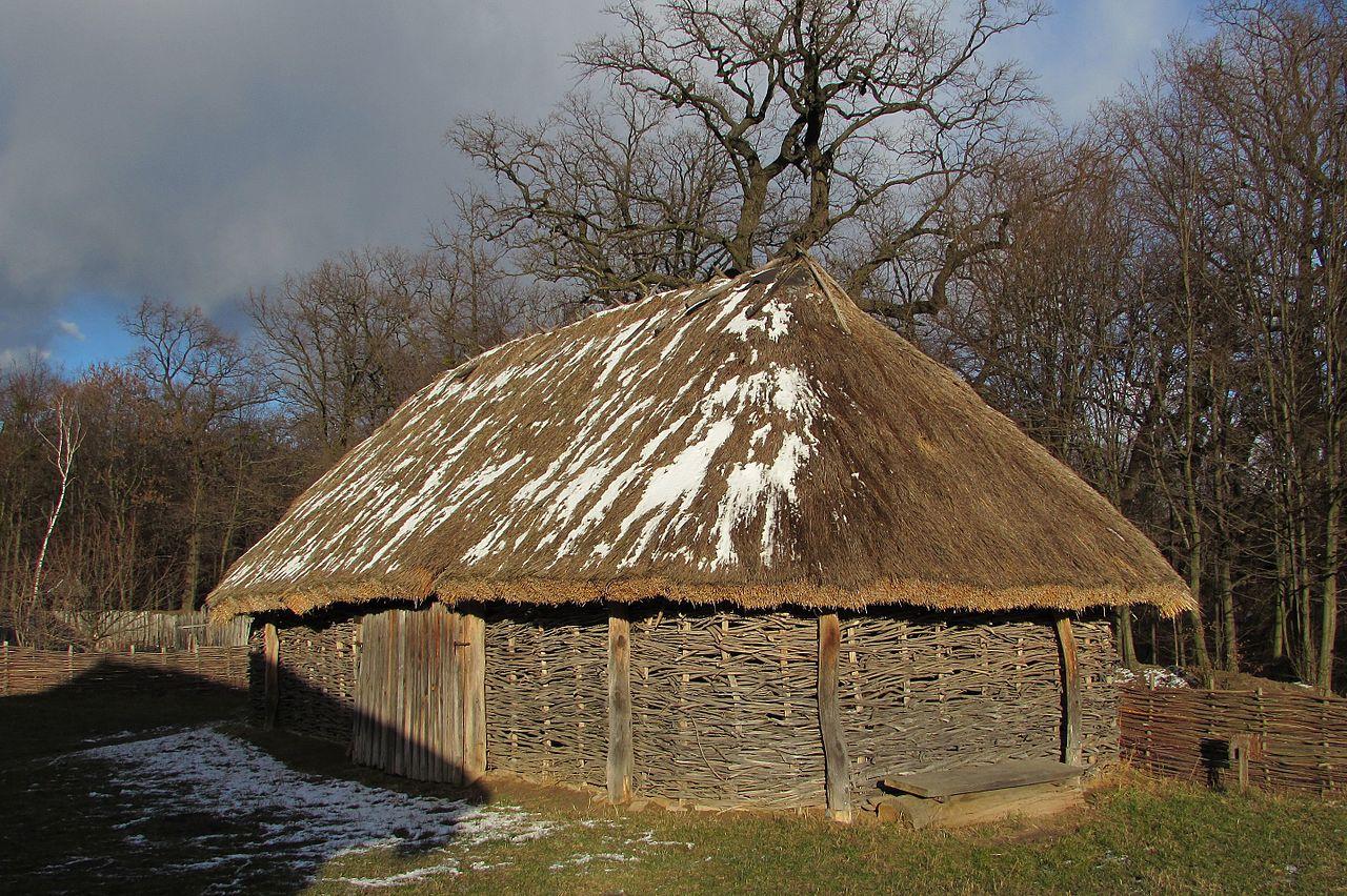 Хлів з села Рижки Коропського району, Чернігівська область
