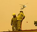 ACTFB firefighters-2003Firestorm.jpg