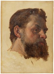 A Bearded Man. Study