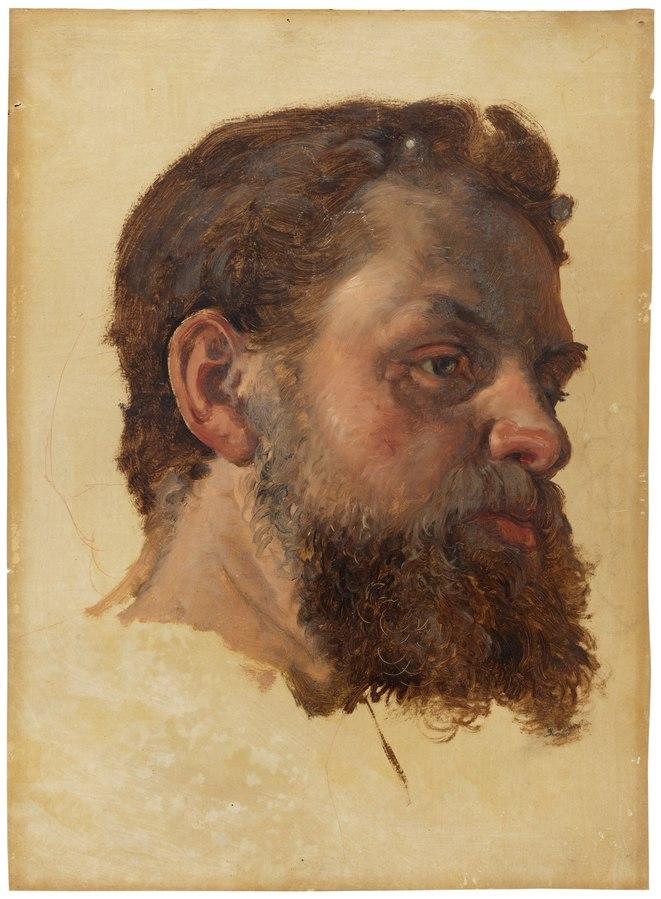 A Bearded Man. Study