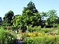 A Garden In Osterley Park - London. (36959321775).jpg