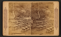 A bee farm in California, from Robert N. Dennis collection of stereoscopic views.png