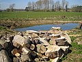A dead tree reduced to logs - and a new pond - geograph.org.uk - 389841.jpg