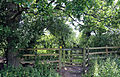 A fence with kissing gate at Woodland Trust wood Theydon Bois Essex England.JPG